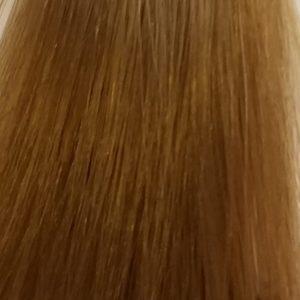 Barva na vlasy Eslabondexx 10